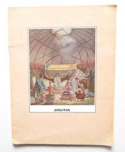 Shelter, Random House, 1973, 9780394709918-us