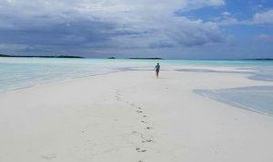 Exuma Sand Bar